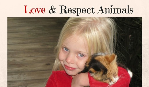 Toddlers And Pets: How to Teach Respect and Compassion