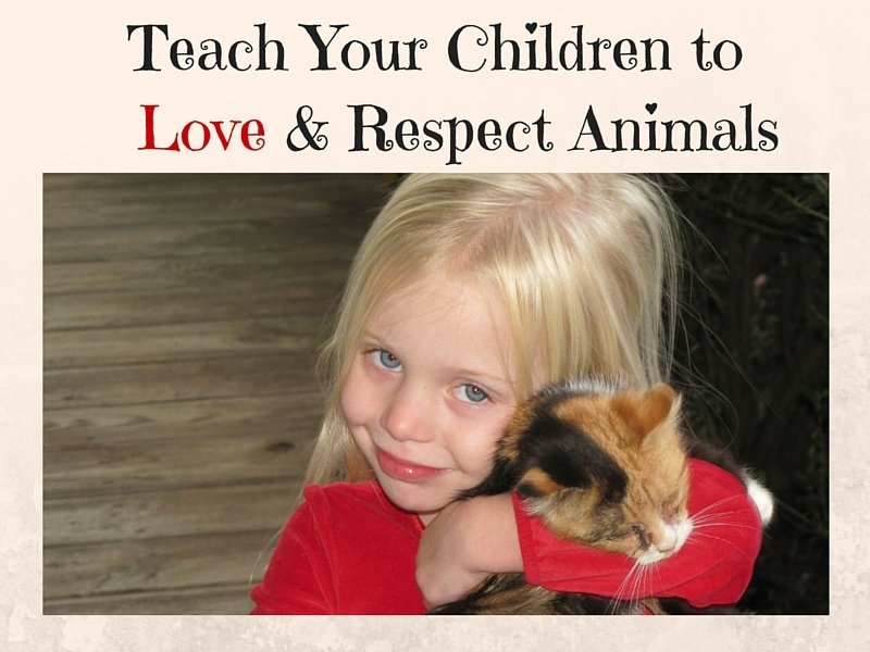Teach Your Children to love and respect animals