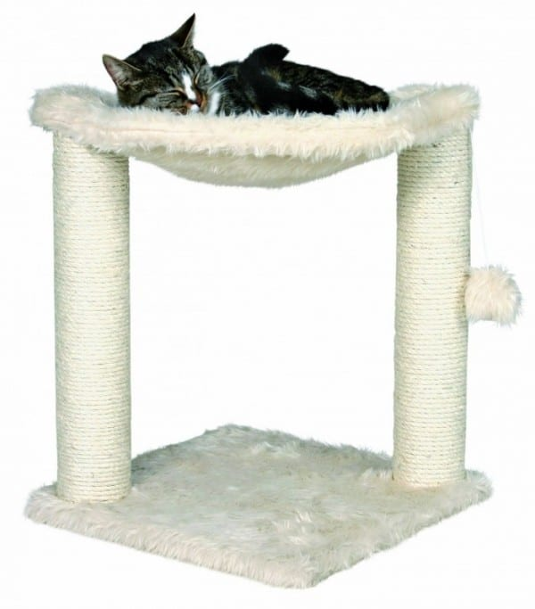 10 Best Cat Beds For Your Feline Friend