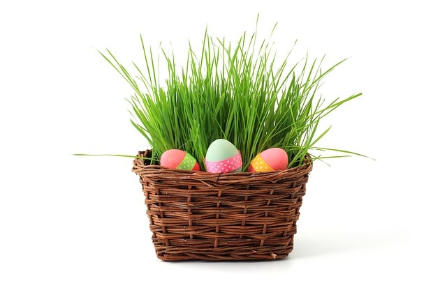Frugal Yet Fun Easter Gift Ideas