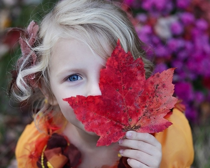 40+ Fun Fall Activities For The Whole Family