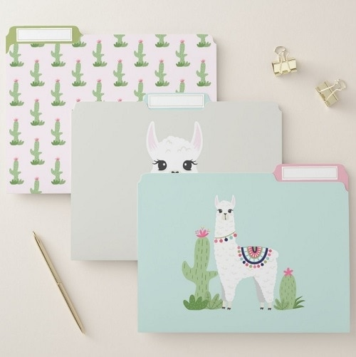 File Folder - Llama School Supplies
